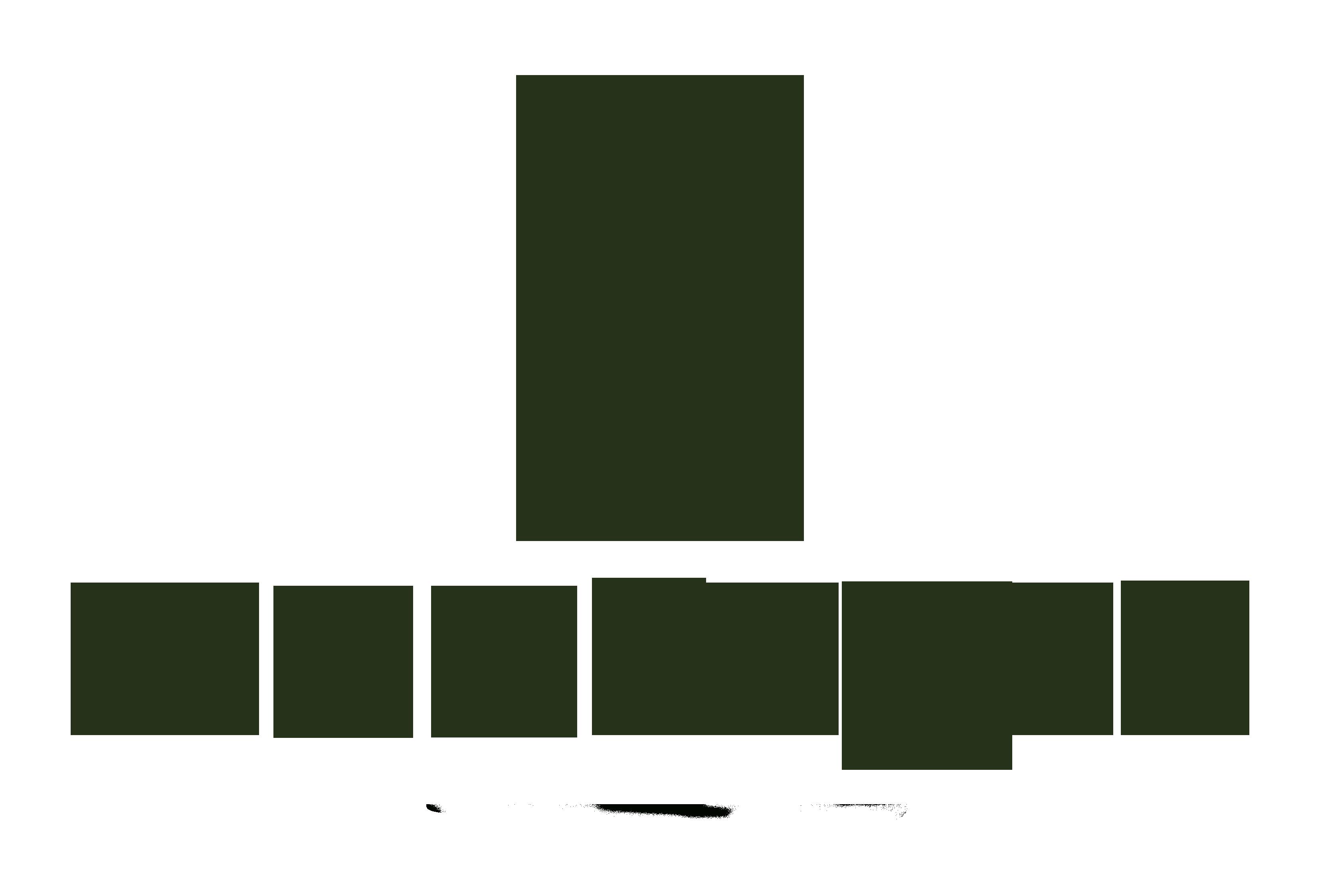 Logo Montaraz